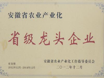 安徽省农业产业化省级龙头企业